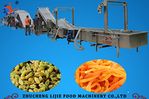 Raisin Processing Line