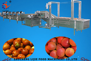 Jujube Cleaning Line